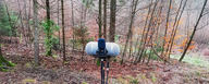 LCT 540 S fieldrecording in a forest